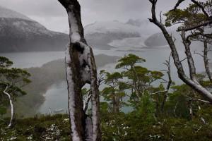 »Im Pia Fjord« | Feuerland | 2014