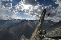 Salbit Gipfelnadel